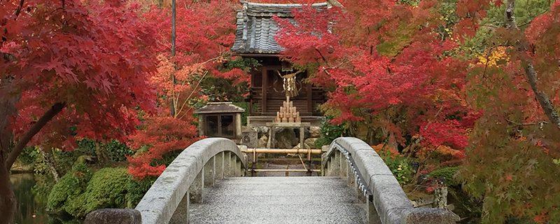 個人的お薦めの京の紅葉