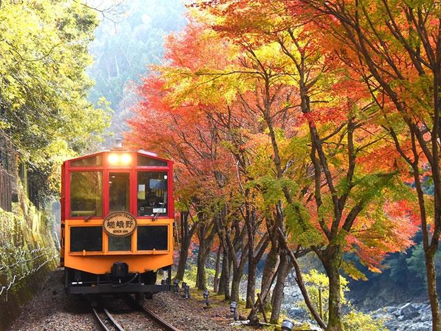 Riding Sagano Romantic train